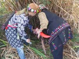 プユマ族婦女除草祭2017:女の祭典!婦女祭にちょこっとだけお邪魔虫♪