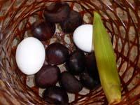 ゆであがった栗と卵とヤングコーン