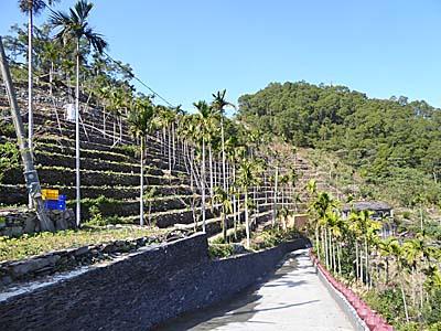 岩板巷と石板を使った段々畑